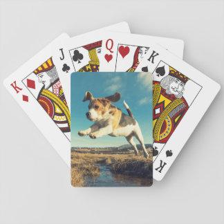 Perro estupendo del beagle - naipes