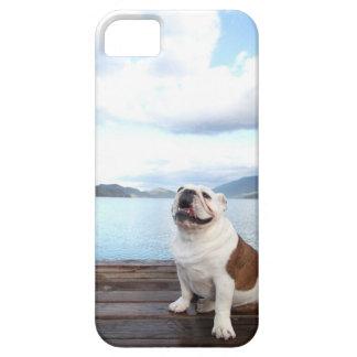 perro feliz del toro que se sienta en cubierta iPhone 5 carcasa