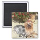 perro feliz, pequeño perro dos - modificado para r imán