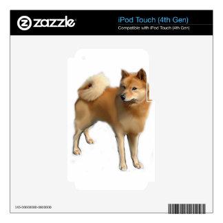 Perro finlandés del perro de Pomerania Calcomanías Para iPod Touch 4G