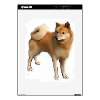 Perro finlandés del perro de Pomerania iPad 2 Skins
