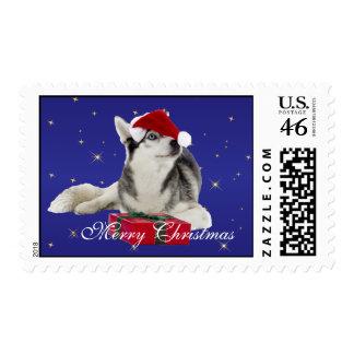 Perro fornido en franqueo de encargo del navidad d