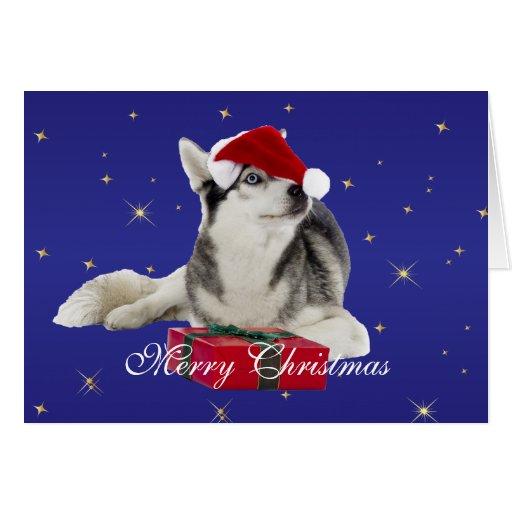 Perro fornido en tarjeta de Navidad de encargo del