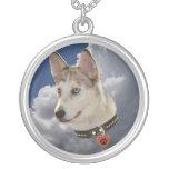 Perro fornido sereno en nubes blancas mullidas collar personalizado