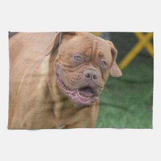 Perro francés del mastín toalla