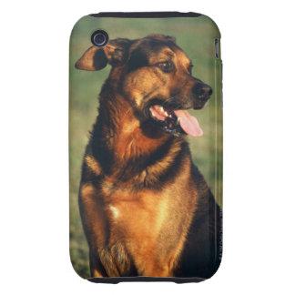 perro tough iPhone 3 cárcasas