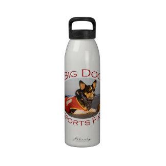 Perro grande, fan de deportes botallas de agua