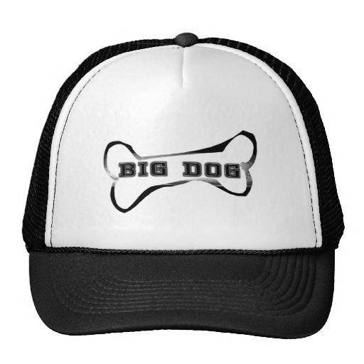 Perro grande gorro de camionero