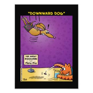 """""""Perro hacia abajo """" Impresion Fotografica"""