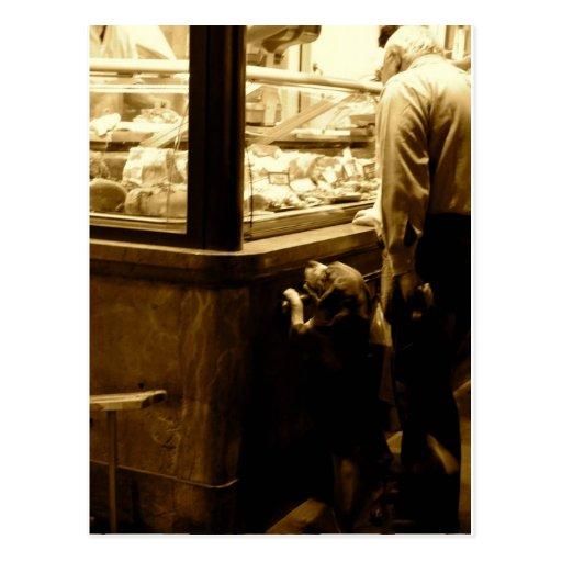 Perro hambriento en Italia Postal