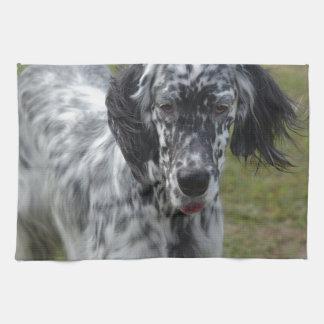 Perro hermoso del organismo inglés toalla de mano