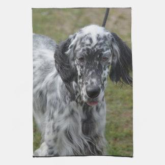 Perro hermoso del organismo inglés toallas