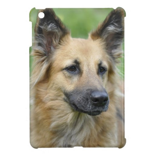 Perro hermoso iPad mini carcasa