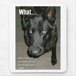 perro Insecto-observado Tapetes De Ratón