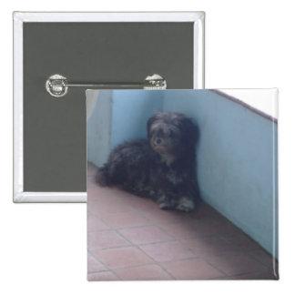 Perro lanudo pin