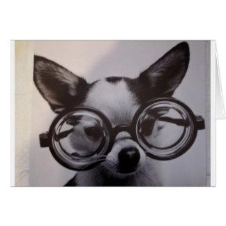 Perro lindo con los vidrios de gran tamaño tarjeta de felicitación