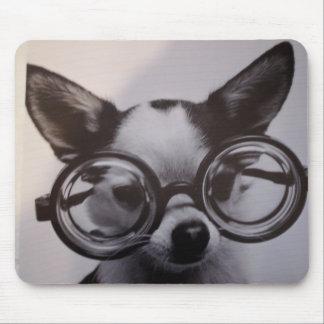Perro lindo con los vidrios mouse pads