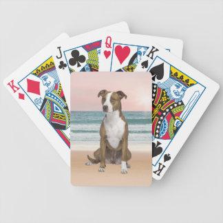 Perro lindo de Pitbull que se sienta en la playa Barajas