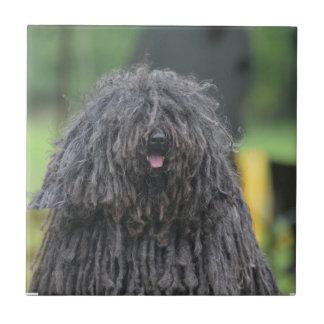 Perro lindo de Puli Azulejo Cuadrado Pequeño