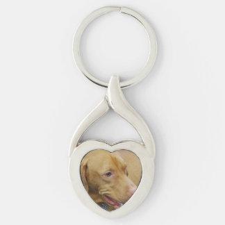 Perro lindo de Vizsla Llavero Plateado En Forma De Corazón