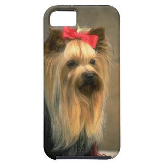 Perro lindo de Yorkie - caso del iPhone 5 de Zazzl iPhone 5 Protector