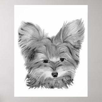 Perro lindo de Yorkie en la impresión del lápiz Póster