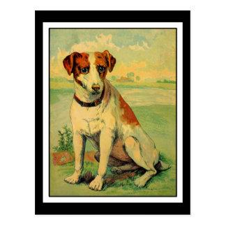 Perro lindo del beagle postales