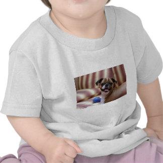 Perro lindo estupendo con su bola preferida camiseta