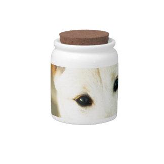Perro lindo jarras para caramelos