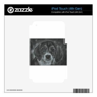 Perro lindo iPod touch 4G calcomanía
