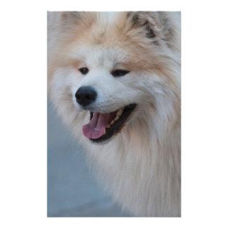 perro lindo papelería