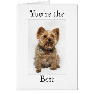 Perro lindo usted es la mejor tarjeta