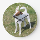 Perro liso, foto hermosa linda del fox terrier relojes