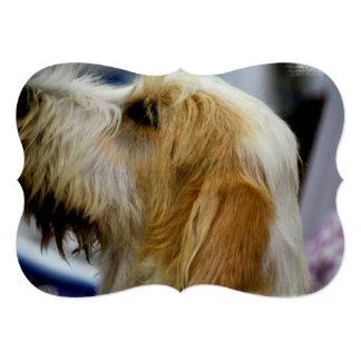 Perro magnífico del afloramiento invitación 12,7 x 17,8 cm