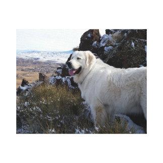 Perro majestuoso de la montaña lienzo envuelto para galerías