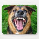 Perro malo con los dientes grandes tapete de raton