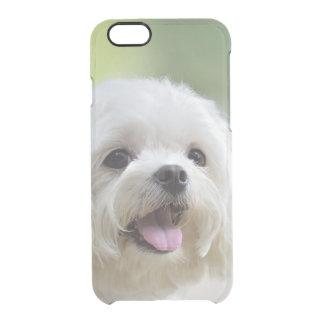 Perro maltés blanco que pega hacia fuera la lengua funda clear para iPhone 6/6S