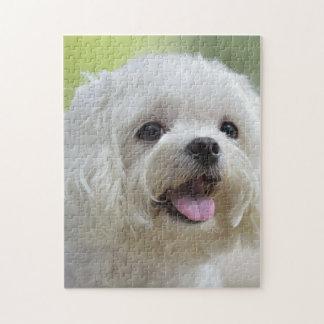 Perro maltés blanco que pega hacia fuera la lengua rompecabezas