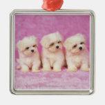 Perro maltés; está una pequeña raza del perro blan adornos de navidad