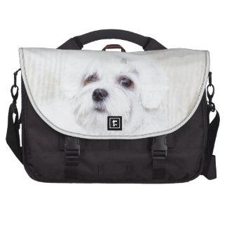 Perro maltés lindo bolsas para portátil