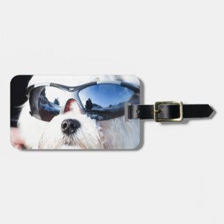 Perro maltés lindo etiqueta de maleta