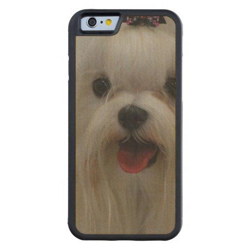 Perro maltés lindo funda de iPhone 6 bumper arce