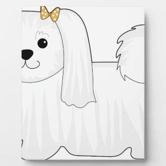 Perro maltés placas para mostrar