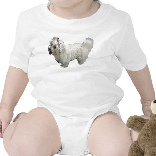 Perro maltés traje de bebé