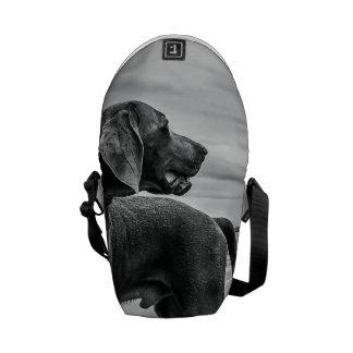 Perro maravilloso bolsa de mensajeria
