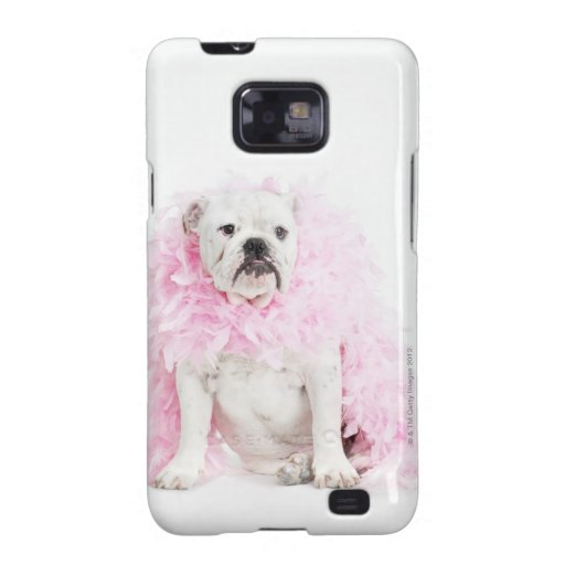 Perro masculino blanco con la boa rosada galaxy s2 carcasas