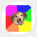 ¡Perro Meme del consejo cualquier manera que usted Etiquetas Redondas