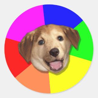 ¡Perro Meme del consejo cualquier manera que usted Pegatina Redonda
