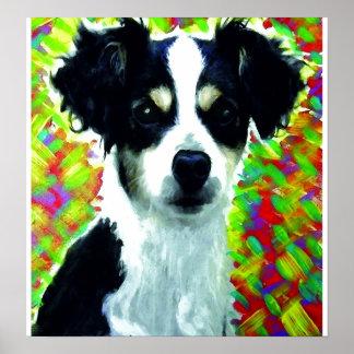 Perro mezclado de la raza posters