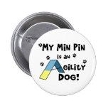 Perro mínimo de la agilidad del Pin